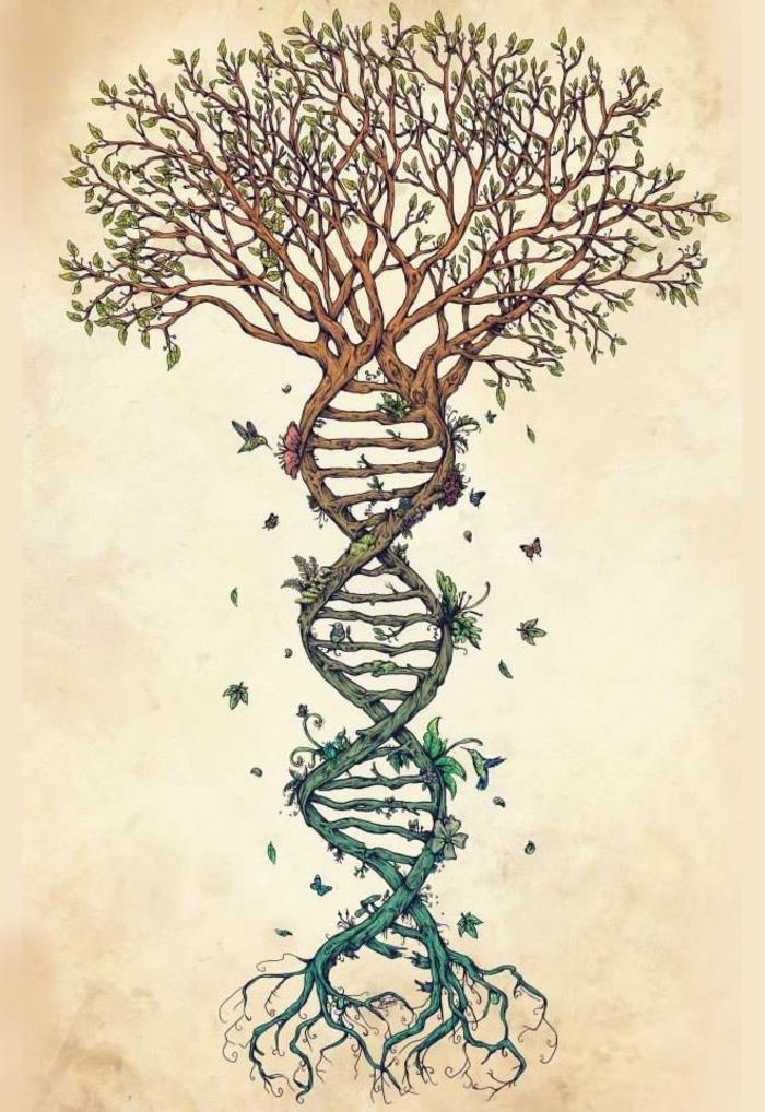 cool-image-de-l-arbre-de-vie-tronc-d-arbre-dessin-dessins-arbres-dessin-d-arbre-de-vie